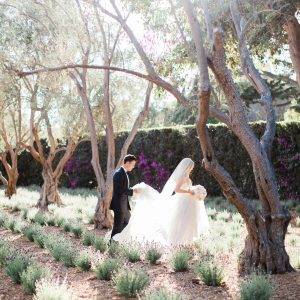 weddings - san ysidro ranch - santa barbara wedding, michel b events